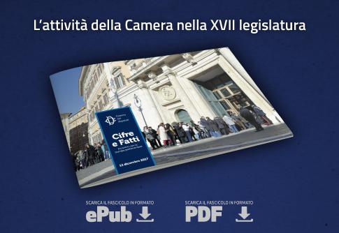 Xvii legislatura home page for Diretta dalla camera dei deputati